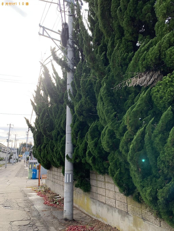 【青森市】庭木伐採、木の回収・処分ご依頼 お客様の声