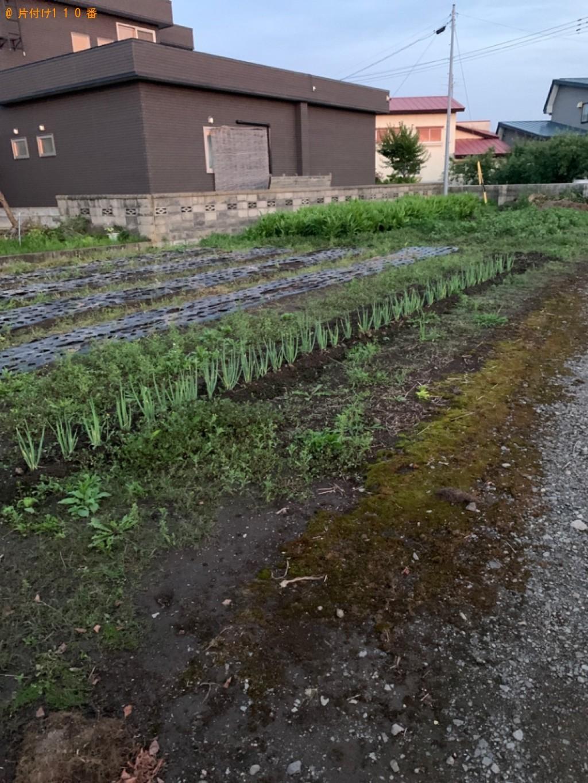 【平川市町】タラの木の根っこ、ドラム缶の回収と草むしりご依頼