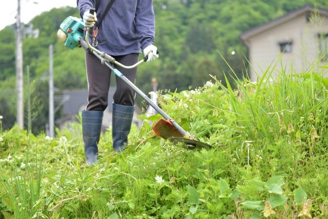 弘前市で草刈りに最適な年3回の時期~楽に草刈りを終えるコツまで徹底解説